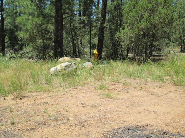 4948 Forest View Rd., Lakeside, AZ 85929 Photo 19