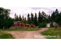 Home for sale: 65 Bear Trail, Lake George, CO 80827