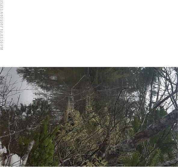 134 River Rd., Dennysville, ME 04628 Photo 7