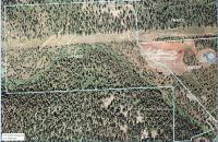 Home for sale: 73.02 Res Acres Bridge St., Truckee, CA 96161