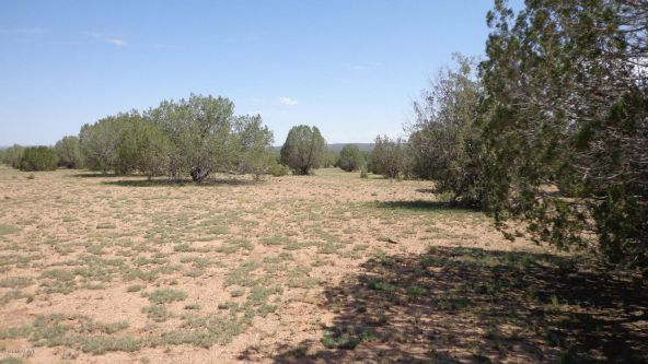 261 Juniperwood Ranch Lot 261, Ash Fork, AZ 86320 Photo 11