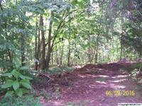 Home for sale: N.W. Lindsay Dr., Fort Payne, AL 35968