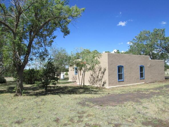 1593 Cr 3140, Vernon, AZ 85940 Photo 20