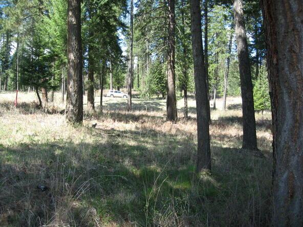 Lot 31b Rock Creek Ridge, Worley, ID 83876 Photo 20