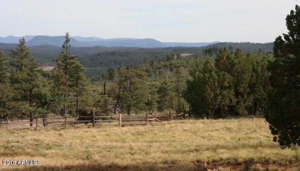 220 W. Zane Grey Cir., Christopher Creek, AZ 85541 Photo 13
