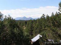 Home for sale: Tbd Black Mountain, Gardner, CO 81040