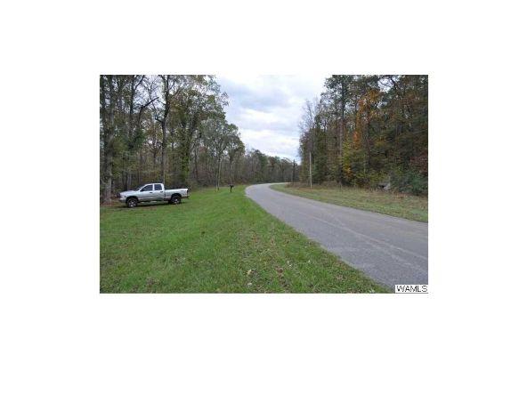 3896 County Rd. 38, Sawyerville, AL 36776 Photo 16