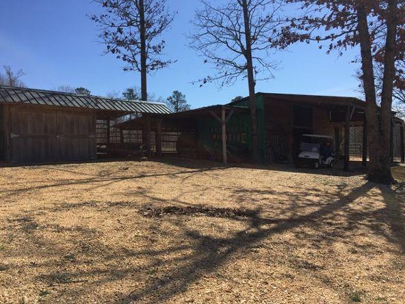 2430 Lost Creek Rd., Russellville, AL 35653 Photo 10
