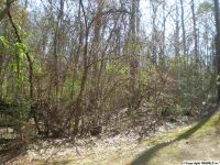 Home for sale: Lot 17 Lakeshore Dr., Langston, AL 35755