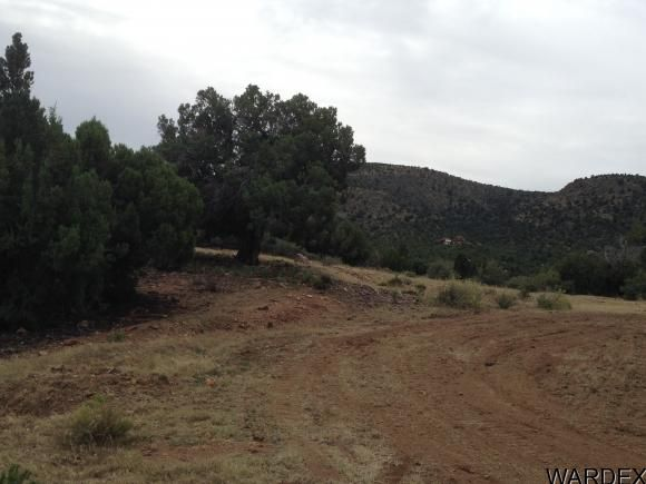 17751 E. Black Bear Trail, Kingman, AZ 86401 Photo 6