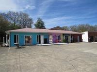 Home for sale: 431 East Bernard Ave., Greeneville, TN 37745