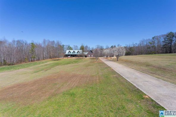 16442 Co Rd. 59, Woodland, AL 36280 Photo 82