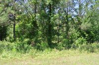 Home for sale: Lot 133 Canvasback Dr., Leesburg, GA 31763