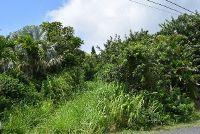 Home for sale: Kane Pl., Naalehu, HI 96772