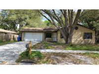 Home for sale: 3213 Acapulco Dr., Riverview, FL 33578