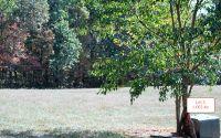 Home for sale: Lt3 Jack Groves Ln., Hayesville, NC 28904