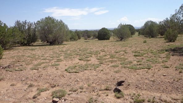 261 Juniperwood Ranch Lot 261, Ash Fork, AZ 86320 Photo 38
