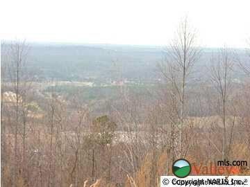 4220 Citadel Rock Rd., Fort Payne, AL 35967 Photo 4