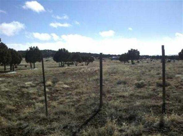 21 Acres Turkey Lake Rd., Show Low, AZ 85901 Photo 12