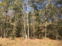 Home for sale: 2682 Mona Ln., Alford, FL 32420