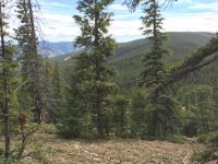 Home for sale: Golden Rule Rd., Pitkin, CO 81241