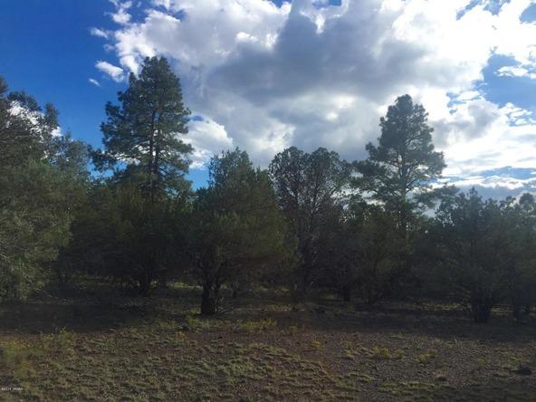 850 Cinder Pit Rd., Show Low, AZ 85901 Photo 52