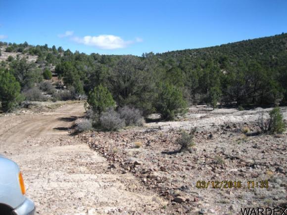 00 N. Willows Ranch Rd., Kingman, AZ 86401 Photo 9