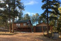 Home for sale: 225 3rd St., Guffey, CO 80820