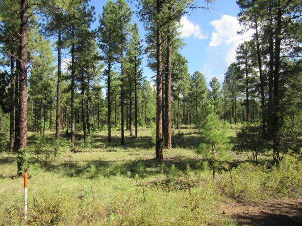 4486 Stone Pine, Pinetop, AZ 85935 Photo 31