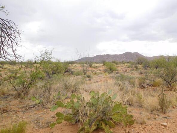 16705 S. Sierrita Mountain, Tucson, AZ 85736 Photo 28