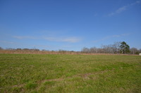 Home for sale: 95 Trimble Rd., Cullman, AL 35055