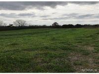 Home for sale: 1391 Co Rd. 1635, Cullman, AL 35058