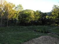 Home for sale: 5267 Ringos Mills Rd., Hillsboro, KY 41049