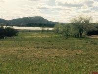 Home for sale: 65 Bocea Dr., Durango, CO 81301