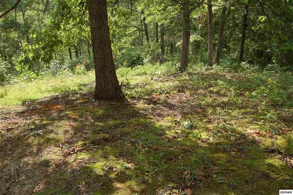 Lot 86 Hatcher Mtn Rd., Sevierville, TN 37862 Photo 9