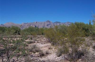 2420 Camino Miraval, Tucson, AZ 85718 Photo 4