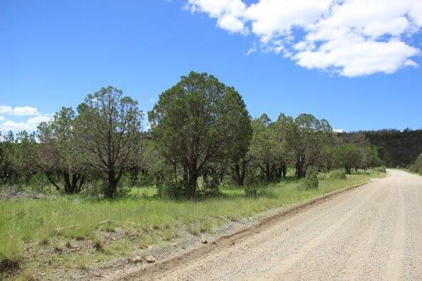 105 Silver Fox Ln., Alto, NM 88312 Photo 15