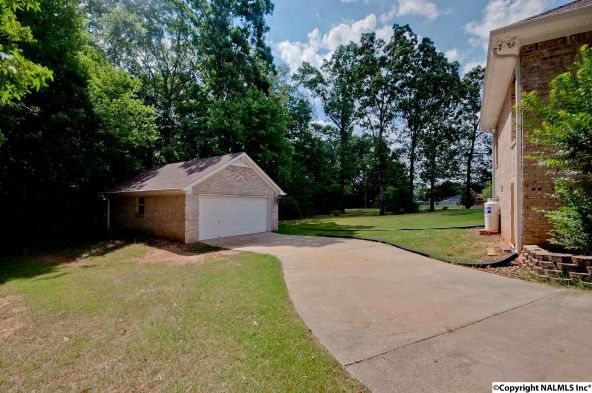 133 Turtle Bend Dr., Toney, AL 35773 Photo 42