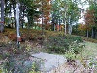Home for sale: Lot 1d Olafsen Rd., Lackawaxen, PA 18435