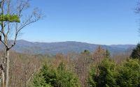 Home for sale: 388 Shawnee Trail, Chatsworth, GA 30705