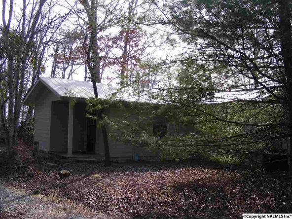 9416 County Rd. 103, Mentone, AL 35984 Photo 31