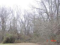 Home for sale: Lot 11, 12 Oak Grove Addition, Crane, MO 65633