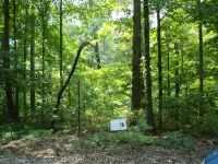 Home for sale: Lot 76 Gannaway Rd., Leitchfield, KY 42754