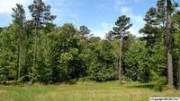 Home for sale: 4 Lake Pointe Cir., Scottsboro, AL 35769