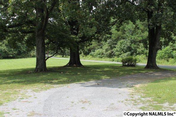 4475 County Rd. 106, Mentone, AL 35967 Photo 43