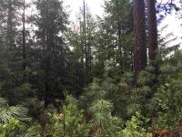 Home for sale: Lot 18 Forest Ln., Dunsmuir, CA 96025