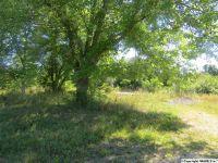 Home for sale: 322 Ester Rd., Grant, AL 35747