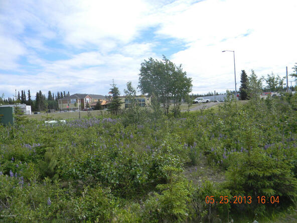 10448 Kenai Spur Hwy., Homer, AK 99611 Photo 5