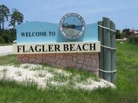 Home for sale: 25 Birchview Pl., Palm Coast, FL 32137