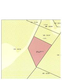 Home for sale: 0 Ray Burton Rd., Lynchburg, TN 37352